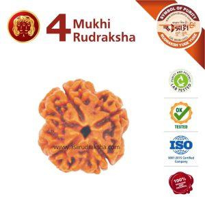 Mithun Rashi Rudraksha 4 Face
