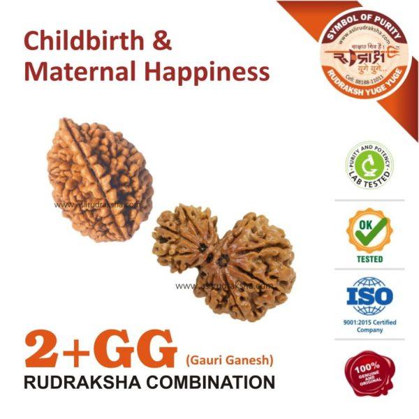 Rudraksha Combo 2 with Gauri Ganesh