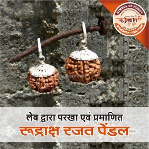 Asli Rudraksha