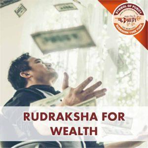 https://aslirudraksha.com/